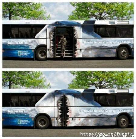 Photo Humour - Page 2 Bus-2